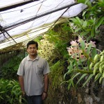Mohan Pradhan with his orchids in Gangtok
