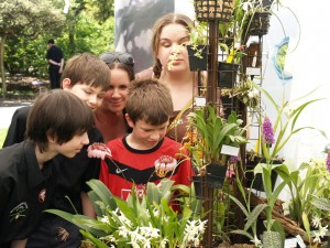 Matt and Tom show visitors everything about orchids
